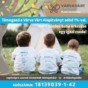 VVA_banner_300x300px_OK